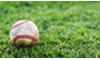 Baseball betting online